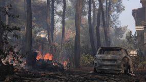 Σταμάτα: Οι καταστροφές που άφησε πίσω της η φωτιά