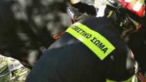 Η φωτογραφία του πυροσβέστη με την διψασμένη χελώνα στην Πάτρα που έχει γίνει VIRAL