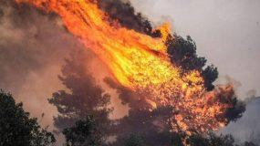 Μεγάλη Φωτιά Εύβοια : Εγκλωβίστηκαν πυροσβέστες – Εκκενώνονται συνεχώς οικισμοί