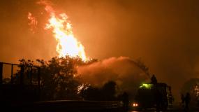 «Τυπικό δείγμα πυρκαγιάς της κόμης»: Για το ασυγχώρητο έγκλημα με τα πεύκα θα μιλήσει κανείς;