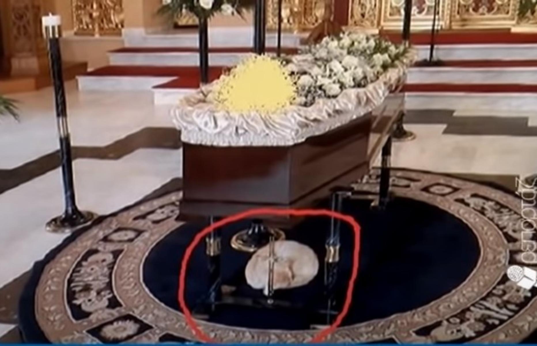 Απίστευτο : Γατάκι στην Κρήτη πηγαίνει σε κηδείες και παρηγορεί τους συγγενείς –  (video)