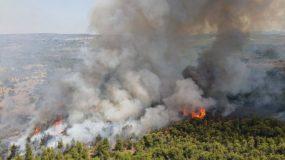 Αδιανόητο: Δεκατετράχρονος ομολόγησε ότι ευθύνεται για 9 από τις 13 φωτιές στον Θεολόγo!