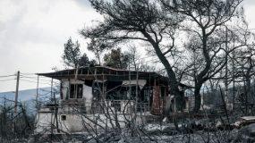 Φρίκη : Κρανίο βρέθηκε στα καμένα στα Βίλια