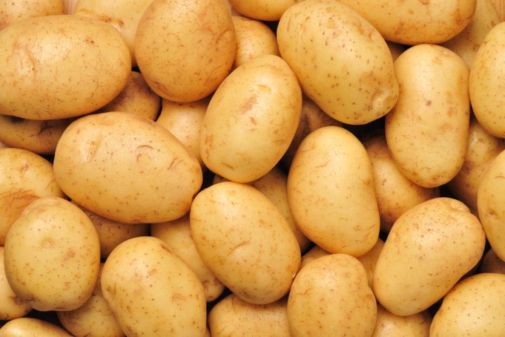 Η δίαιτα με γιαούρτι & πατάτες: Το αναλυτικό πρόγραμμα διατροφής για γρήγορη απώλεια βάρους